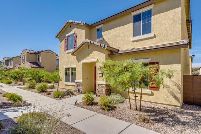 10973 E Palmetto Pointe Trail, Tucson, AZ 85747 (MLS #21916917) :: The Property Partners at eXp Realty