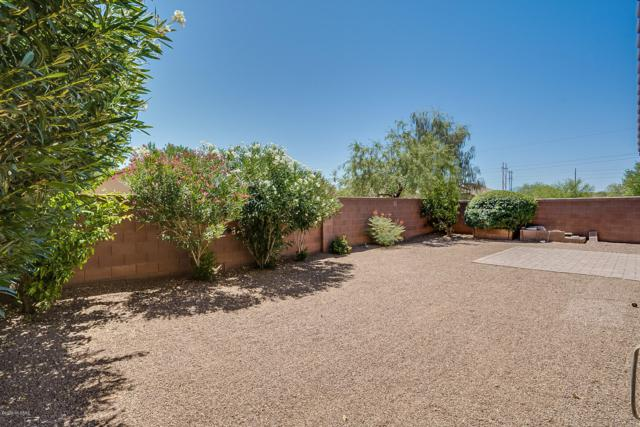 13993 S Camino El Becerro, Sahuarita, AZ 85629 (#21916950) :: Long Realty - The Vallee Gold Team