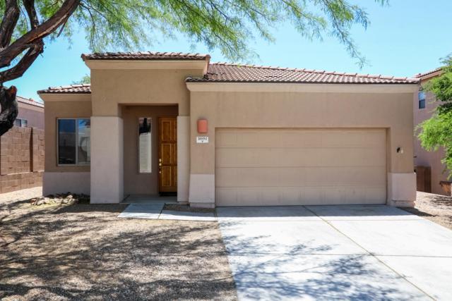10894 E New Rock Ridge Drive, Vail, AZ 85641 (#21916963) :: The Josh Berkley Team