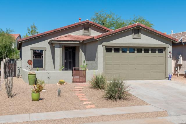 12965 N Yellow Orchid Drive, Oro Valley, AZ 85755 (#21916974) :: Gateway Partners | Realty Executives Tucson Elite