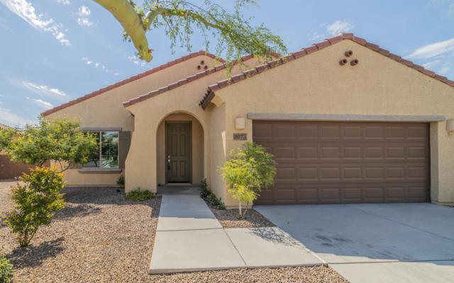 8075 N Circulo El Palmito, Tucson, AZ 85704 (#21917129) :: Long Realty Company