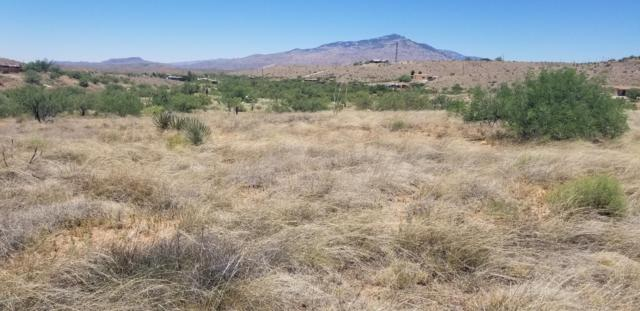15600 S Lovell Road Na, Benson, AZ 85602 (#21917159) :: Long Realty Company