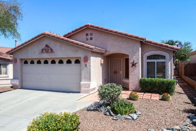 494 W Tara Danette Drive, Tucson, AZ 85704 (#21917258) :: Long Realty Company