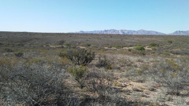 E Rainbow Road, Tombstone, AZ 85638 (#21917349) :: Long Realty - The Vallee Gold Team