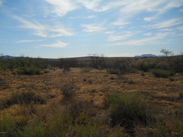 TBD S Jeffords Trail 45 & 46, Willcox, AZ 85643 (#21917468) :: The Josh Berkley Team