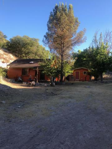 470 Calle Orozco, Nogales, AZ 85621 (#21917509) :: Long Realty - The Vallee Gold Team
