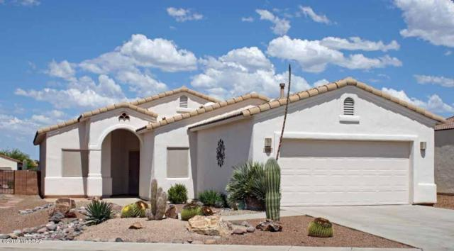2289 S Via Massari, Green Valley, AZ 85614 (#21917542) :: Long Realty - The Vallee Gold Team