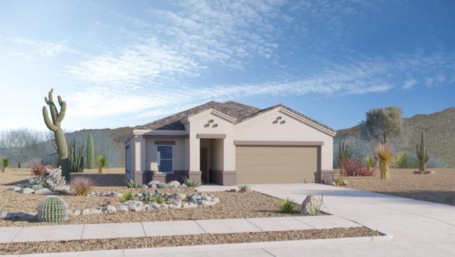 9143 W Blue Roan Lane, Marana, AZ 85653 (#21917576) :: Long Realty - The Vallee Gold Team