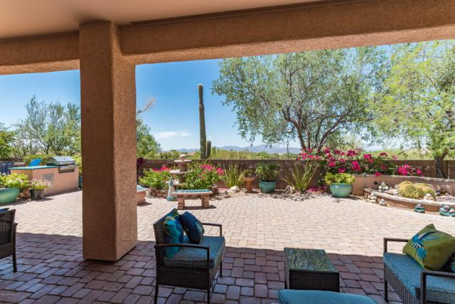 13117 N Desert Mosaic Place, Marana, AZ 85658 (#21917829) :: Long Realty - The Vallee Gold Team