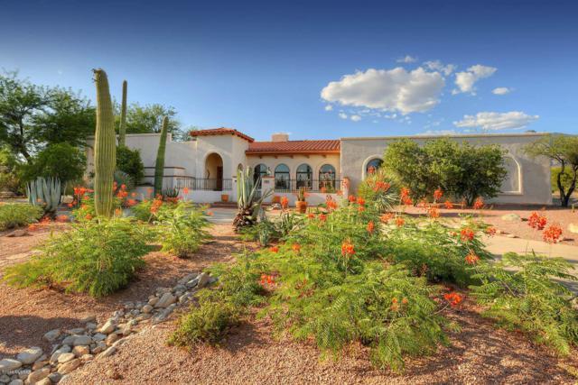 1261 E Placita Del Cervato, Tucson, AZ 85718 (#21917843) :: The Local Real Estate Group | Realty Executives