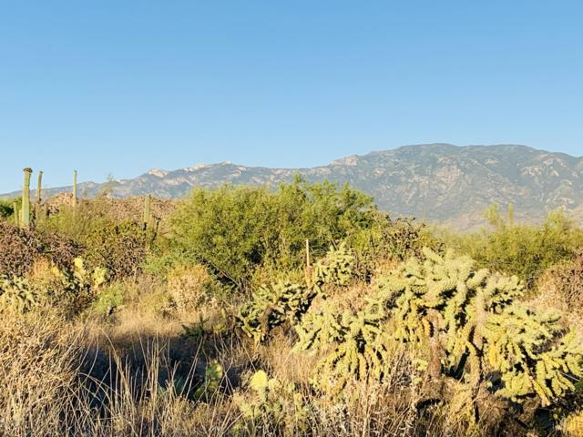 14371 N Giant Saguaro Place #29, Oro Valley, AZ 85755 (#21918302) :: Long Realty Company