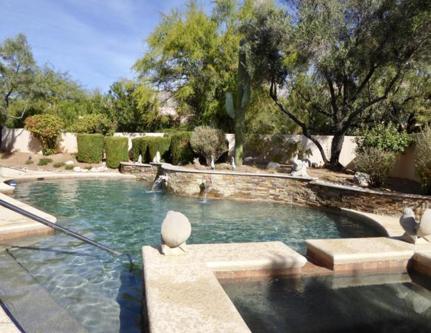 6320 N Via Acacia, Tucson, AZ 85718 (#21918347) :: Long Realty Company
