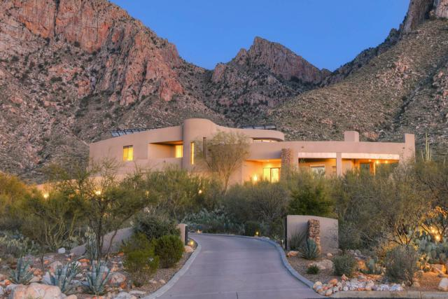 9810 N Carodera Canyon Place, Tucson, AZ 85737 (#21918477) :: The Local Real Estate Group | Realty Executives