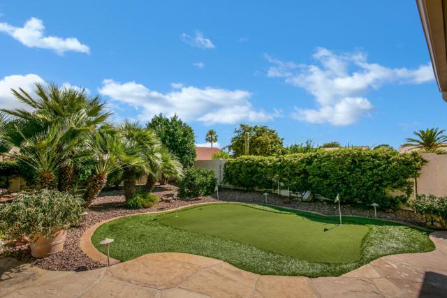 63663 E Desert Peak Drive, Tucson, AZ 85739 (#21918482) :: Long Realty Company