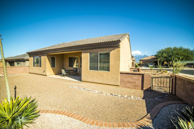 5900 S Painted Canyon Drive, Green Valley, AZ 85622 (#21918531) :: Long Realty - The Vallee Gold Team