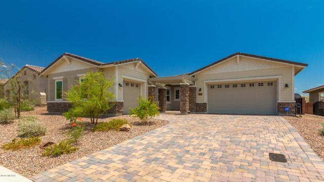 7405 Cactus Flower Pass, Marana, AZ 85658 (#21918645) :: Luxury Group - Realty Executives Tucson Elite