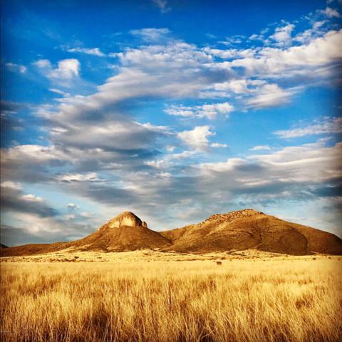 26 Mountain Thunder Lane, Elgin, AZ 85611 (#21918650) :: Long Realty Company