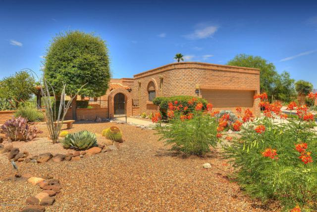 3372 S Calle Del Albano, Green Valley, AZ 85622 (#21918695) :: Long Realty - The Vallee Gold Team