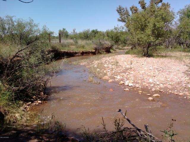 E Walnut Trail #0, Pearce, AZ 85625 (#21918768) :: Tucson Property Executives