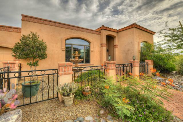 11411 E Andalusian Place, Tucson, AZ 85748 (#21918799) :: Luxury Group - Realty Executives Tucson Elite