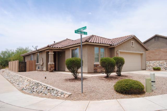 14309 N Fragile Clay Avenue, Marana, AZ 85658 (#21918951) :: Keller Williams