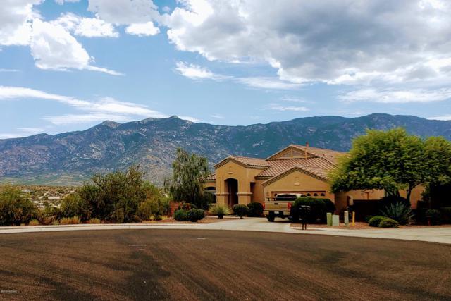 4018 E Rugged Lark Place, Tucson, AZ 85739 (#21918959) :: Long Realty Company