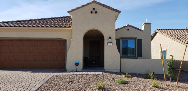 6957 W Kanab Creek Trail, Marana, AZ 85658 (#21918960) :: Luxury Group - Realty Executives Tucson Elite
