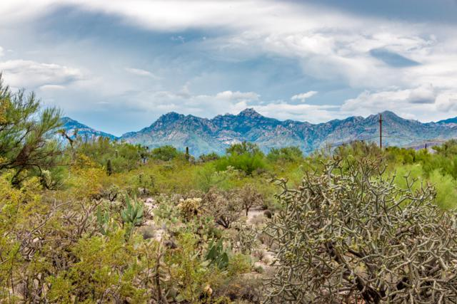 9633 E Giant Cacti Drive #14, Tucson, AZ 85749 (#21918965) :: Long Realty - The Vallee Gold Team