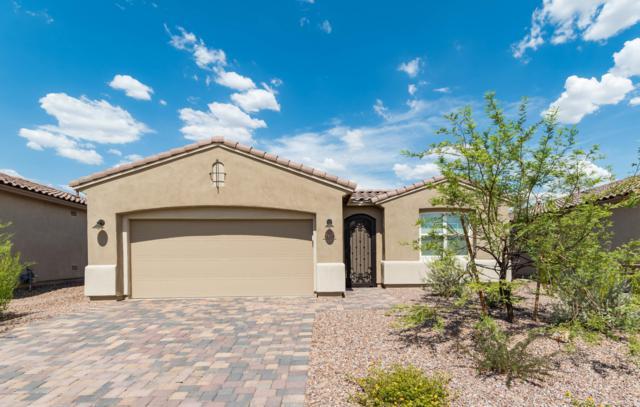 14154 N Silverleaf Lane, Marana, AZ 85658 (#21919000) :: Luxury Group - Realty Executives Tucson Elite