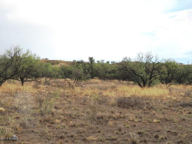 15255 W Cota Road, Arivaca, AZ 85601 (#21919026) :: Realty Executives Tucson Elite