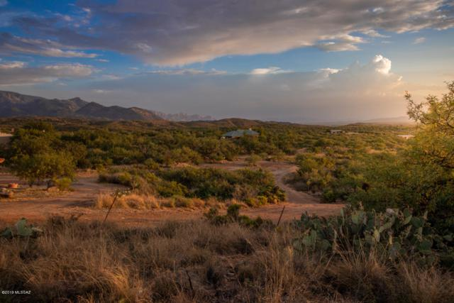 TBD La Mariposa, Oracle, AZ 85623 (#21919042) :: Realty Executives Tucson Elite