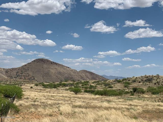 40 acres W Copper Bug Road, Pearce, AZ 85625 (#21919063) :: Long Realty Company