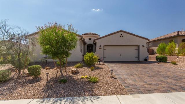 14227 N Golden Barrel Pass, Marana, AZ 85658 (MLS #21919068) :: The Property Partners at eXp Realty