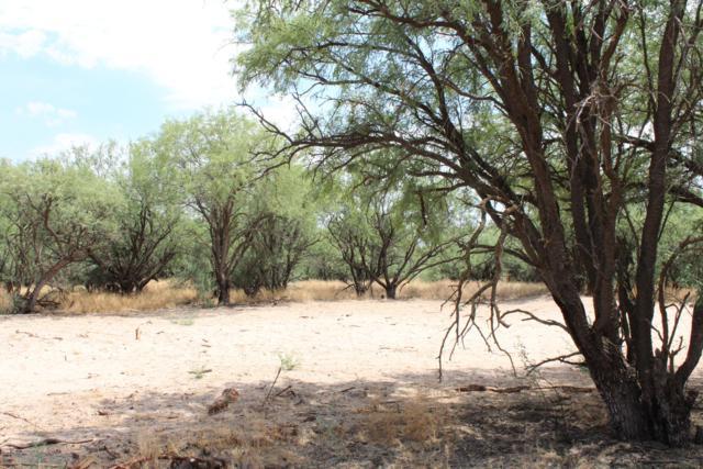 000 Quinn Road C, St. David, AZ 85630 (#21919074) :: Long Realty Company