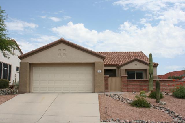 953 E Grass Meadow Place, Oro Valley, AZ 85755 (#21919080) :: Long Realty Company