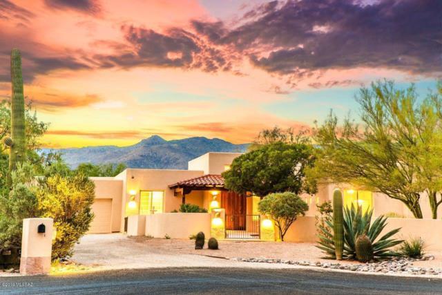 12325 E Danalyn Place, Tucson, AZ 85749 (#21919082) :: Gateway Partners | Realty Executives Tucson Elite