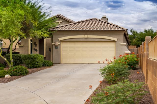908 W Cork Oak Place, Oro Valley, AZ 85755 (MLS #21919085) :: The Property Partners at eXp Realty