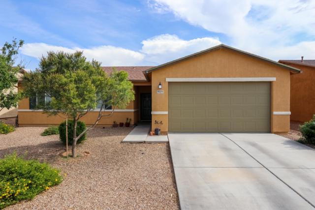 8379 W Kittiwake Lane, Tucson, AZ 85757 (#21919130) :: The Josh Berkley Team