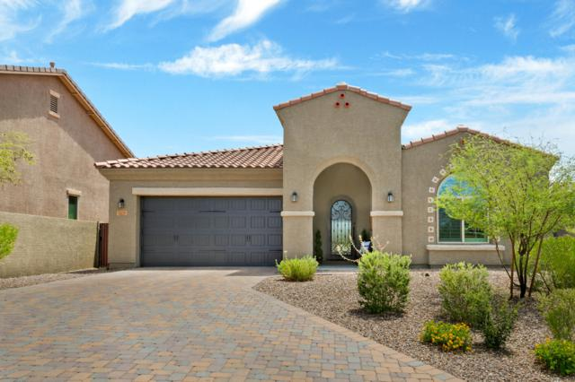 13296 N Downy Dalea Court, Oro Valley, AZ 85755 (#21919141) :: Long Realty Company