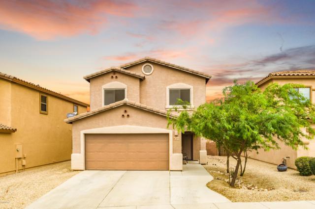 7689 E Fair Meadows Loop, Tucson, AZ 85756 (#21919146) :: The Josh Berkley Team
