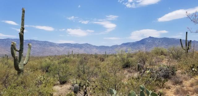 15840 E Colt Creek Place, Vail, AZ 85641 (#21919148) :: The Josh Berkley Team