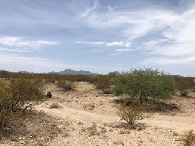 13301 N Derringer Road #123, Marana, AZ 85653 (#21919181) :: The Josh Berkley Team