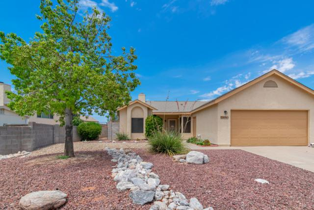 8941 N Spinel Place, Tucson, AZ 85742 (#21919184) :: Realty Executives Tucson Elite