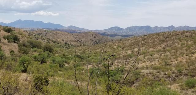 0 S Red Cloud Mine Road, Vail, AZ 85641 (#21919194) :: Realty Executives Tucson Elite