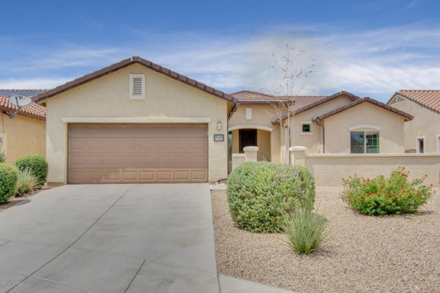 10731 E Peach Bell Place, Tucson, AZ 85747 (#21919203) :: The Josh Berkley Team