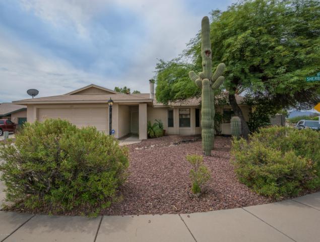 4031 W Sherbrooke Place, Tucson, AZ 85742 (#21919207) :: The Josh Berkley Team