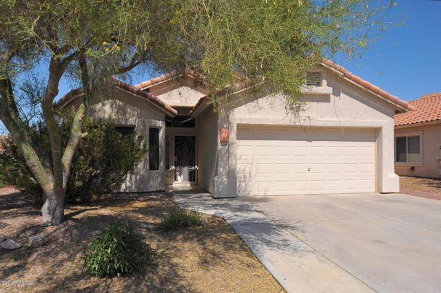 12195 N Sterling Avenue, Oro Valley, AZ 85755 (#21919209) :: The Josh Berkley Team