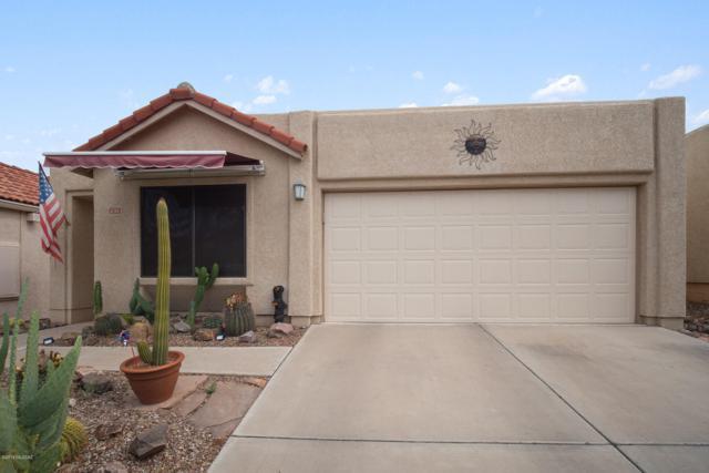 231 E Highcourte Lane, Tucson, AZ 85737 (#21919252) :: Long Realty Company