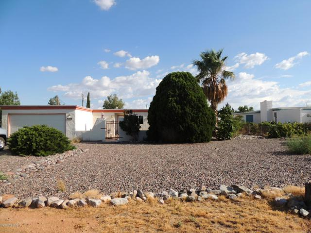 1002 E Christmas Tree Lane, Pearce, AZ 85625 (#21919264) :: Long Realty Company