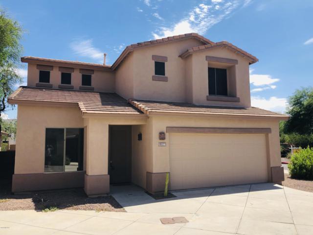 3346 N Camino La Jicarrilla, Tucson, AZ 85712 (#21919286) :: Gateway Partners   Realty Executives Tucson Elite